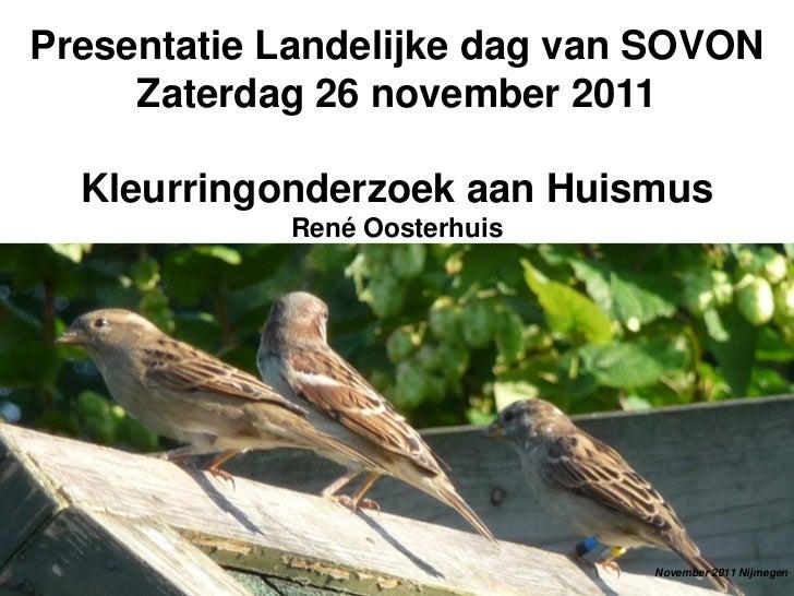 Het dagelijkse leven van gekleurringde huismussen- Rene Oosterhuis - Landelijke Dag SOVON 2011