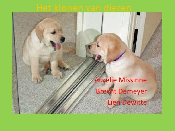 Het klonen van dieren<br />AurélieMissinne<br />Brecht Demeyer<br />Lien Dewitte<br />
