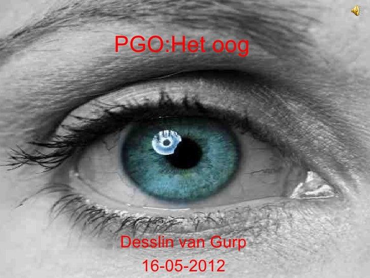 PGO:Het oogDesslin van Gurp  16-05-2012