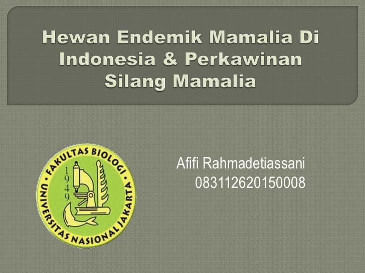 Hewan endemik mamamlia di indonesia & perkawinan silang