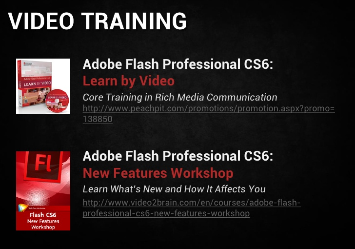 professional total flash adobe training
