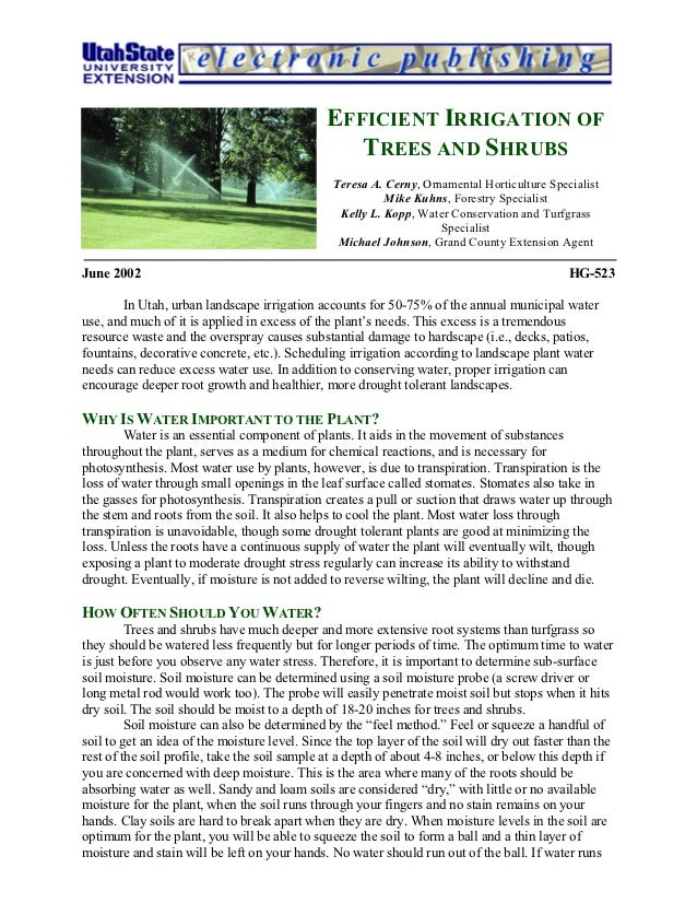 Efficient Irrigation of Trees and Shrubs - Utah State University
