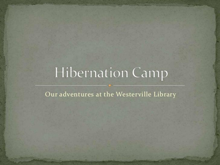 Hibernation Camp