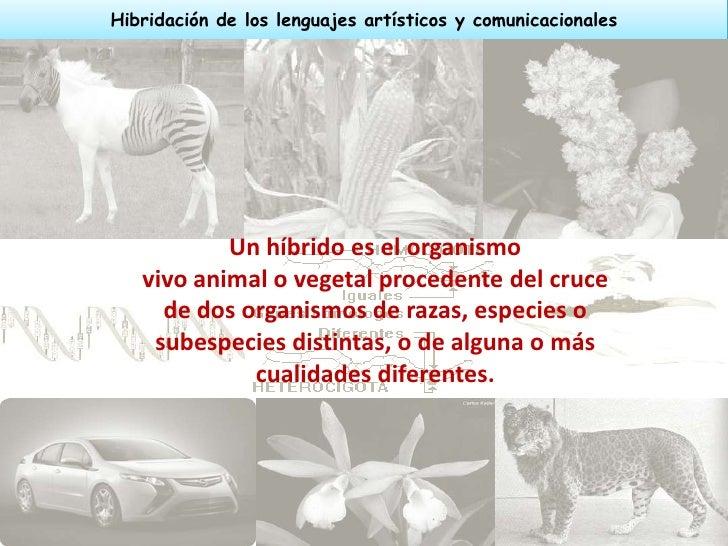 Hibridación de los lenguajes artísticos y comunicacionales           Un híbrido es el organismo   vivo animal o vegetal pr...