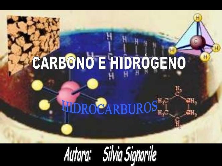 Autora:  Silvia Signorile HIDROCARBUROS CARBONO E HIDRÓGENO