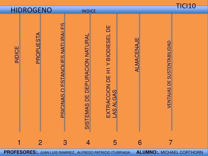 TICI10  <br />HIDROGENO                INDICE<br />PROPUESTA<br />ALMACENAJE<br />INDICE<br />EXTRACCION DE H1 Y BIODIESE...