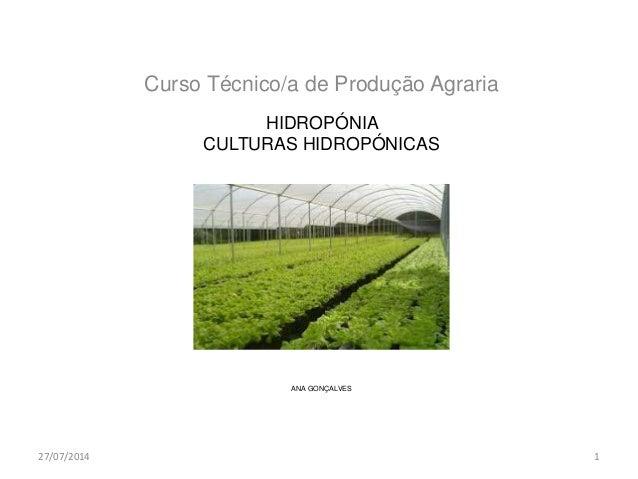 HIDROPÓNIA CULTURAS HIDROPÓNICAS ANA GONÇALVES Curso Técnico/a de Produção Agraria 27/07/2014 1