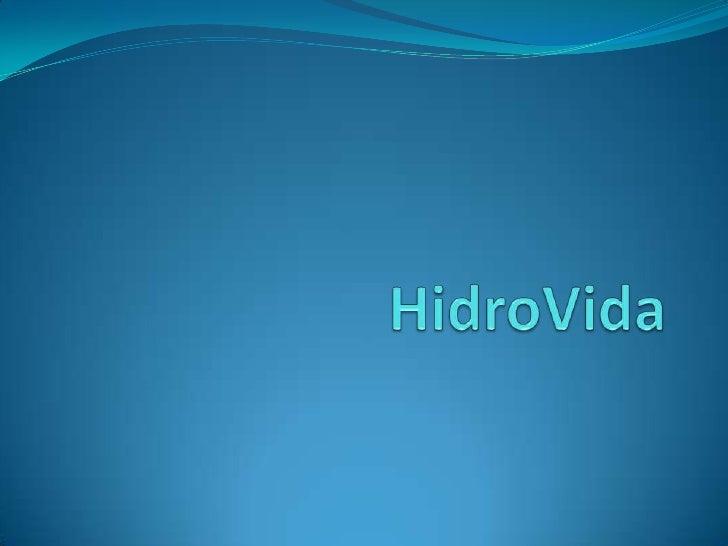 Histórico   A empresa foi criada no ano 2000 por dois amigos vendedores, Thiago Paz e Juarez de Oliveira, que insatisfeito...