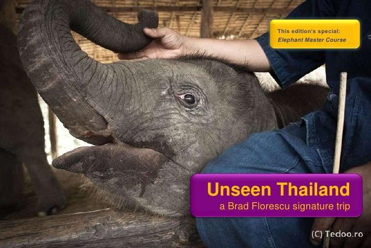 This edition's special:              Elephant Master CourseUnseen Thailand a Brad Florescu signature trip