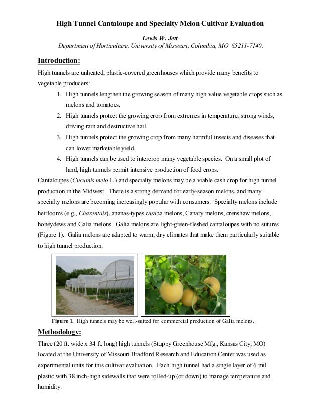 High Tunnel Cantaloupe and Specialty Melon Cultivar Evaluation Lewis W. Jett Department of Horticulture, University of Mis...