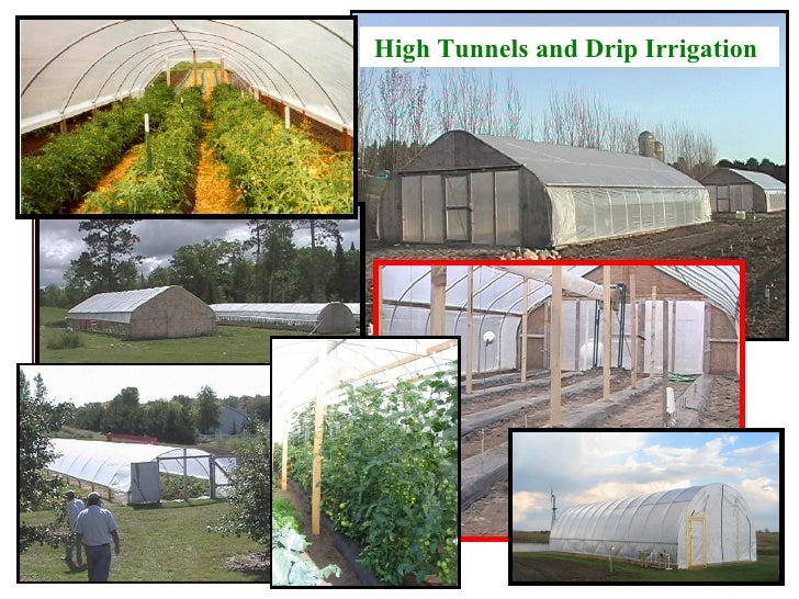 High Tunnels and Drip Irrigation 2012