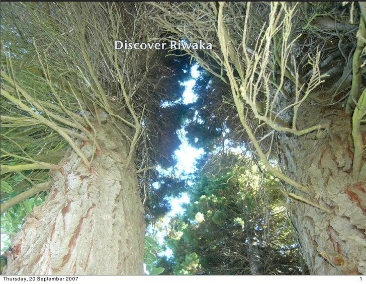 Discover Riwaka                                   Tramping and Kayaking     Thursday, 20 September 2007                   ...