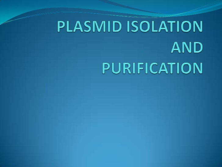 PLASMID ISOLATIONANDPURIFICATION<br />