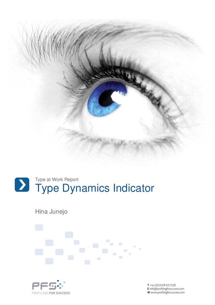 Hina Junejo Type Dynamics Indicator Type At Work Report