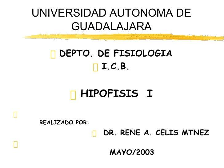 UNIVERSIDAD AUTONOMA DE GUADALAJARA <ul><li>DEPTO. DE FISIOLOGIA </li></ul><ul><li>I.C.B. </li></ul><ul><li>HIPOFISIS  I <...