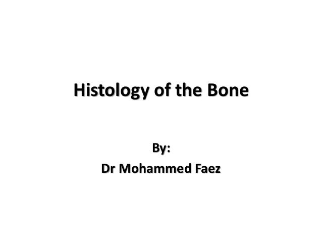 Histology of the Bone By: Dr Mohammed Faez
