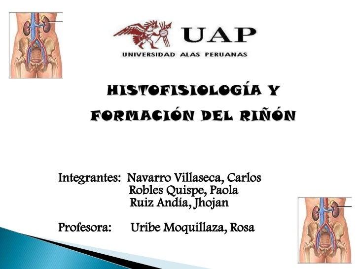 Integrantes: Navarro Villaseca, Carlos             Robles Quispe, Paola             Ruiz Andía, JhojanProfesora:   Uribe M...