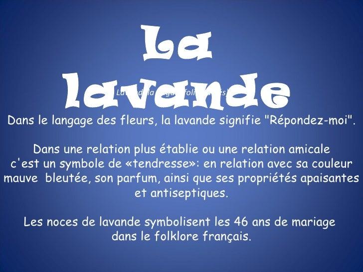 """La          lavande  Lavandula angustifolia (labiés)Dans le langage des fleurs, la lavande signifie """"Répondez-moi"""".     Da..."""