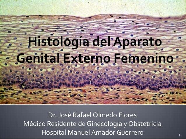 Dr. José Rafael Olmedo Flores Médico Residente de Ginecología y Obstetricia Hospital Manuel Amador Guerrero 1