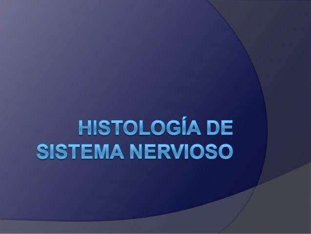 Histologia nervioso