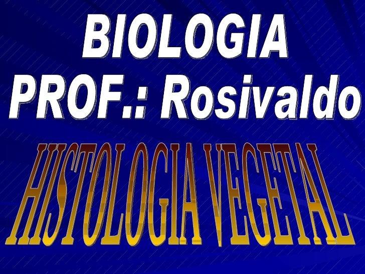 BIOLOGIA PROF.: Rosivaldo HISTOLOGIA VEGETAL