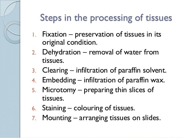 Paraffin Sections What Can Cause Hemosiderin Deposits In