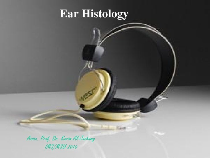 Histology of ear