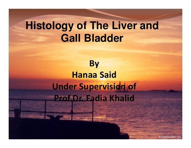 Histology of The Liver and Gall Bladder By Hanaa Said Under Supervision of Prof.Dr. Fadia Khalid