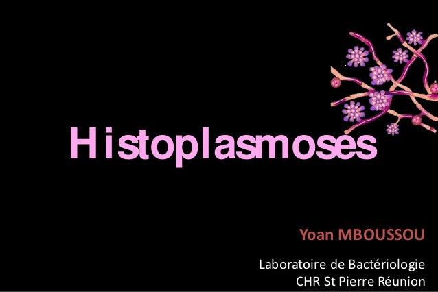 H istoplasmoses Yoan MBOUSSOU Laboratoire de Bactériologie CHR St Pierre Réunion
