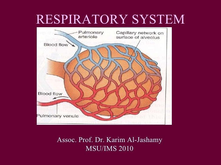 RESPIRATORY SYSTEM Assoc. Prof. Dr. Karim Al-Jashamy MSU/IMS 2010