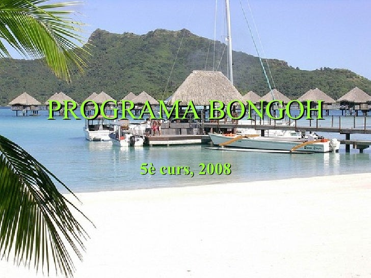 PROGRAMA BONGOH 5è curs, 2008