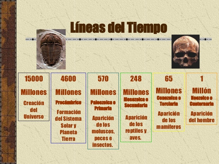 Historia De La Humanidad 1 186 Parte