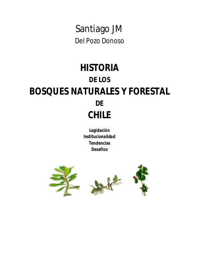 Historia de los Bosques Naturales y Forestal de Chile