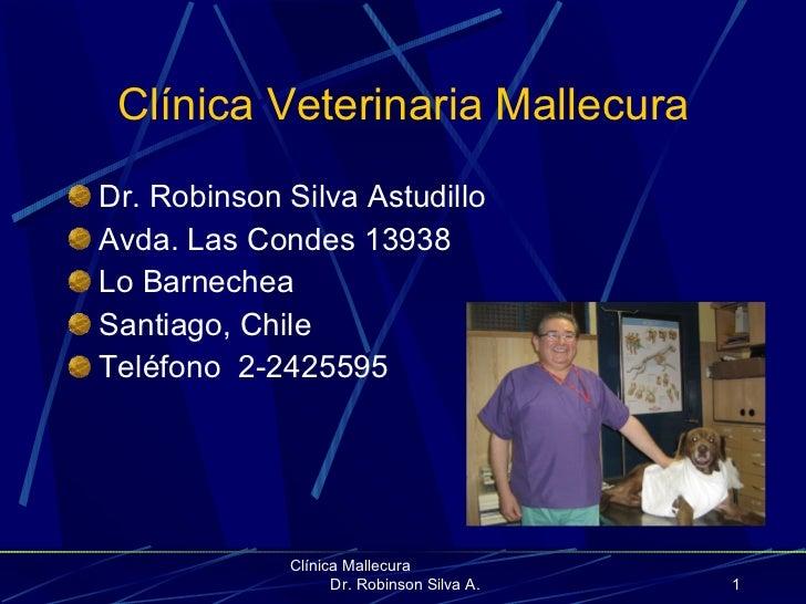 Clínica Veterinaria Mallecura <ul><li>Dr. Robinson Silva Astudillo </li></ul><ul><li>Avda. Las Condes 13938 </li></ul><ul>...