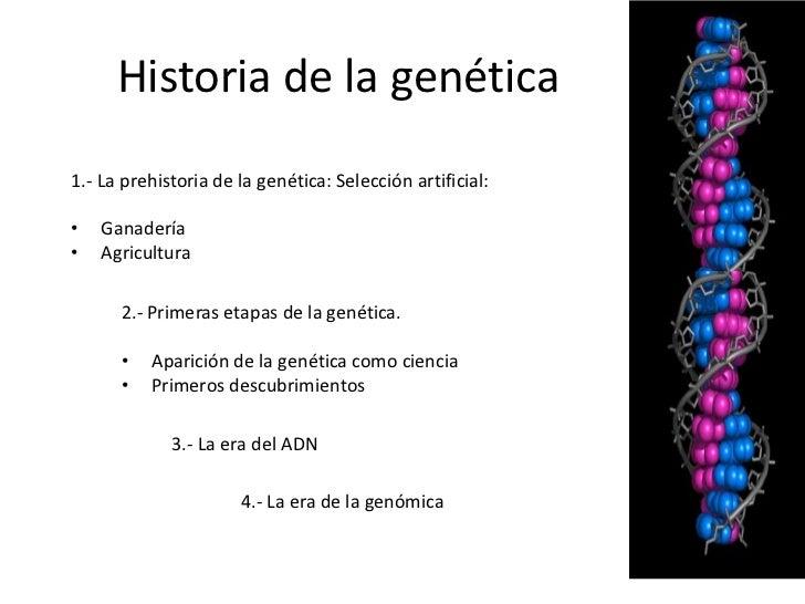 Historia de la genética1.- La prehistoria de la genética: Selección artificial:•   Ganadería•   Agricultura      2.- Prime...