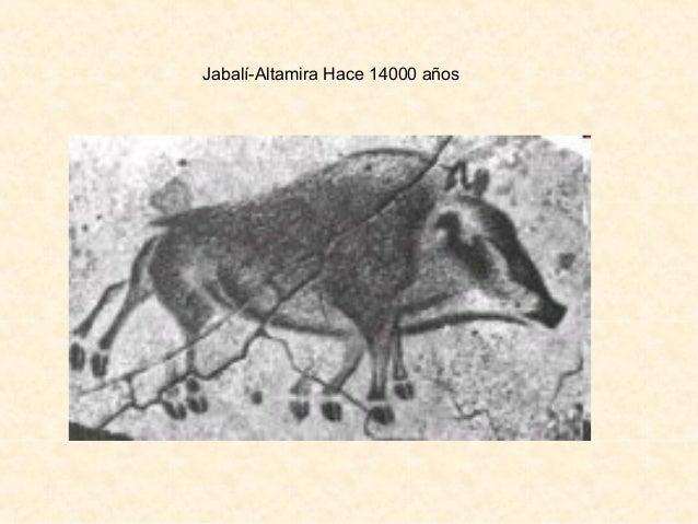 Jabalí-Altamira Hace 14000 años