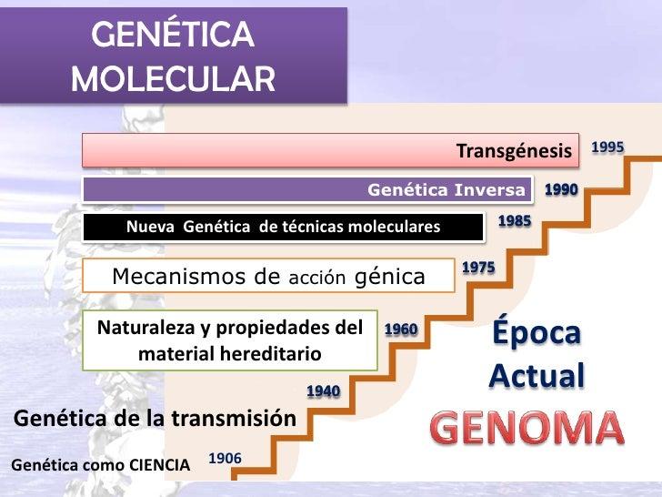 GENÉTICA       MOLECULAR                                                      Transgénesis         1995                   ...