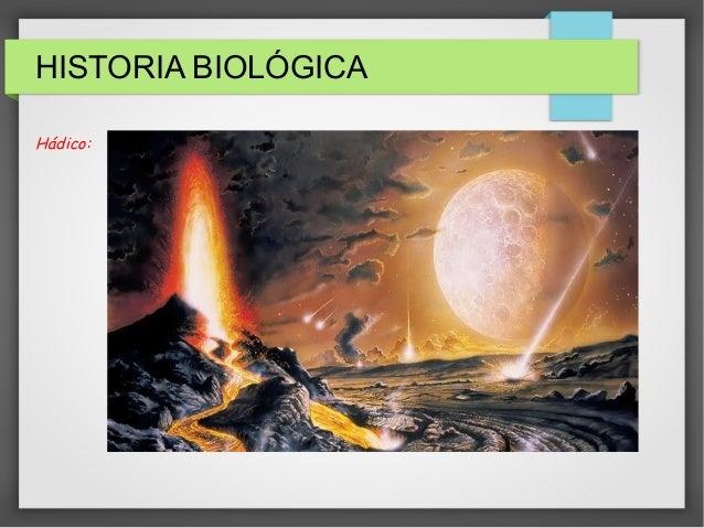 HISTORIA BIOLÓGICA<br /> Hádico:<br />