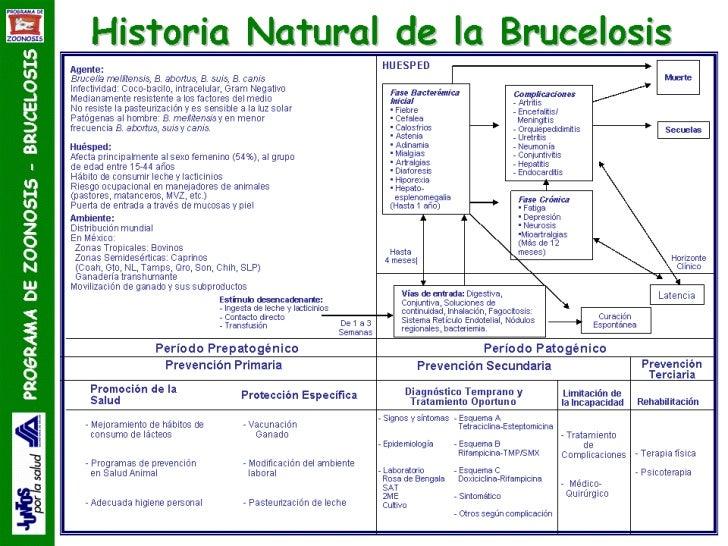 Historia Natural De La Enfermedad[1]