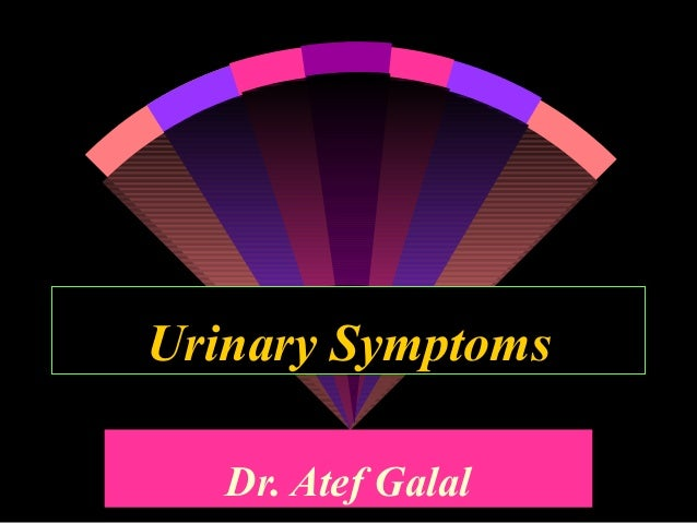 Urinary Symptoms   Dr. Atef Galal