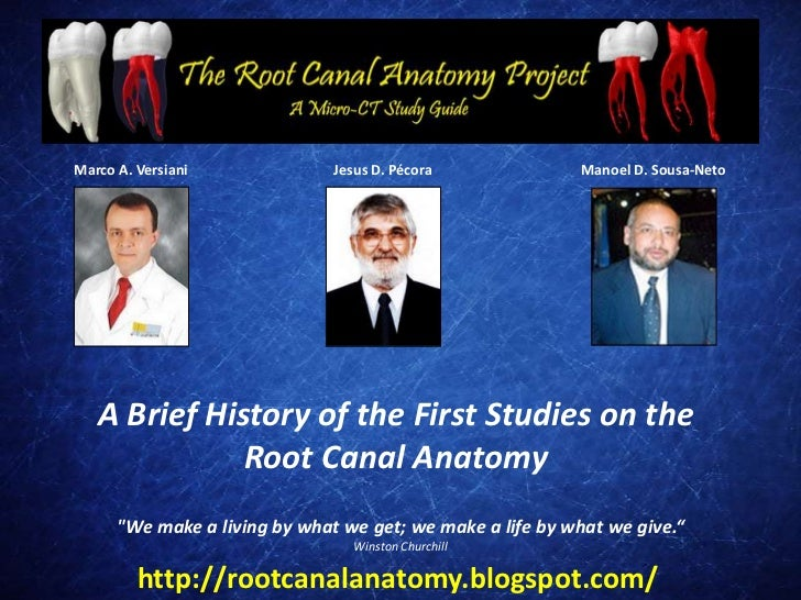 A Brief History of the First Studies on the Root Canal Anatomy