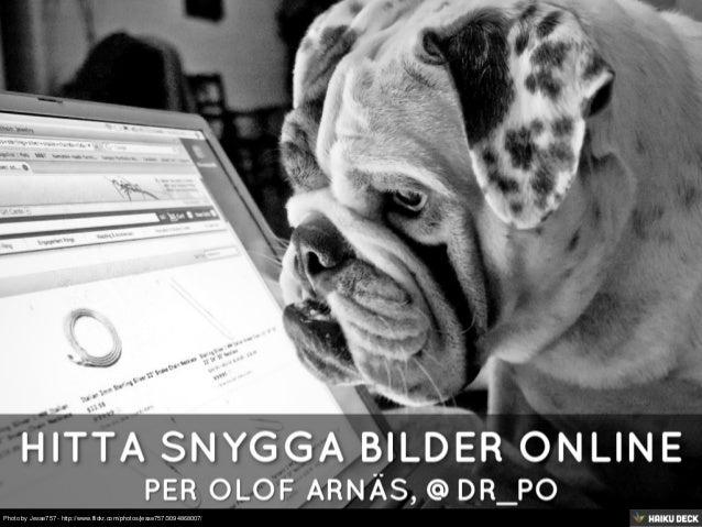 Hitta Snygga Bilder Online