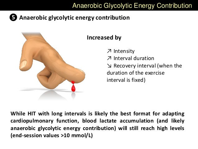 Anaerobic Glycolytic Energy Contribution ❺ Anaerobic glycolytic energy contribution Increased by ↗ Intensity ↗ Interval du...