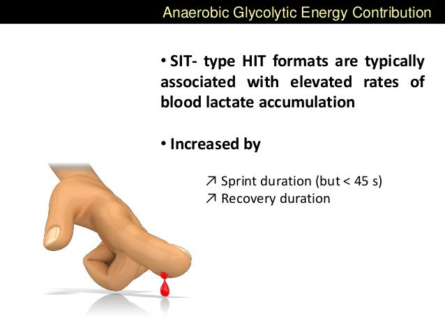 Anaerobic Glycolytic Energy Contribution • SIT- type HIT formats are typically associated with elevated rates of blood lac...