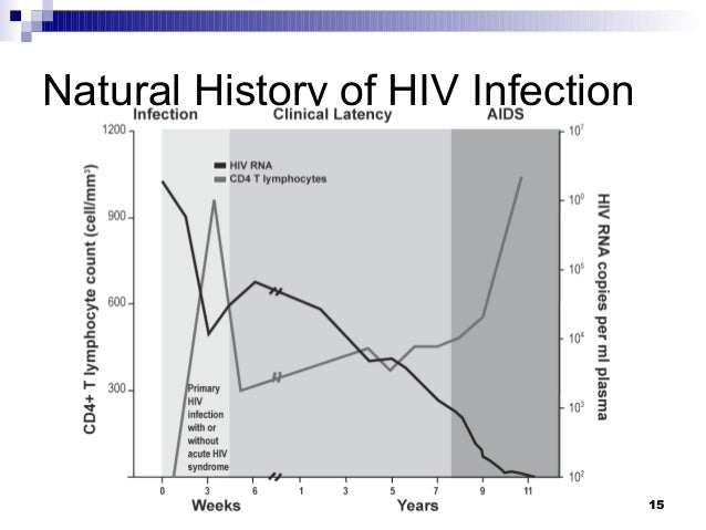 the history and stages of hiv and aids