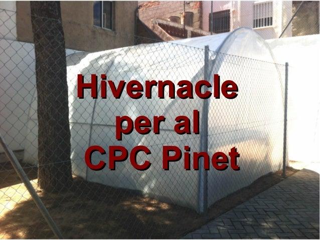 HivernacleHivernacle per alper al CPC PinetCPC Pinet