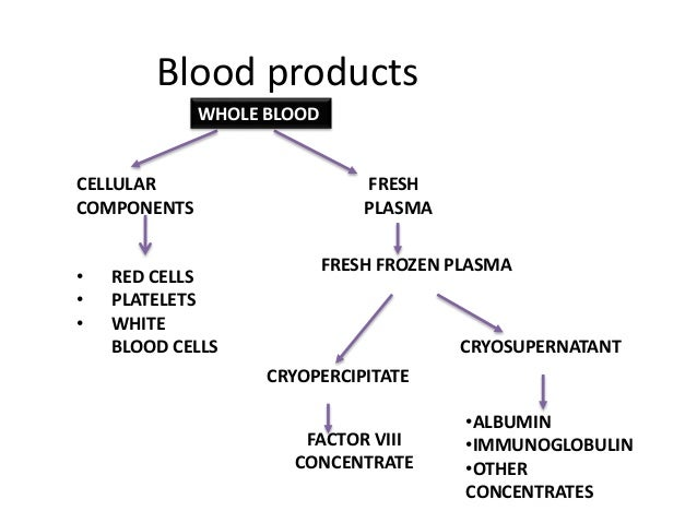 Watch besides Low Blood Pressure During Pregnancy as well Human Heart Diagram With Labels Heart Anatomy Diagram Label Diagram Of Human Heart With Labels 4 moreover Splanchnic Circulation likewise Stock Illustration Sickle Cells Blocking Blood Flow Isolated White Human Image44305102. on circulatory system blood flow