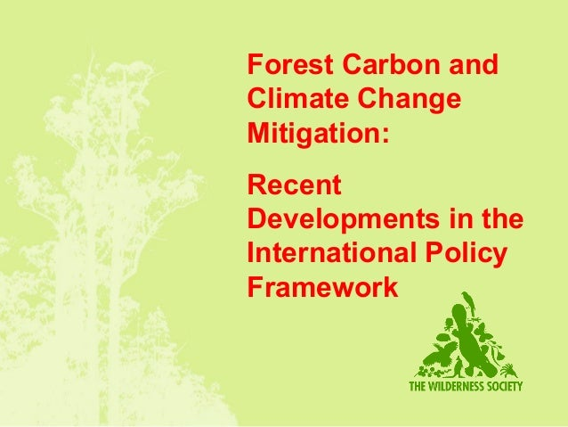 Forest Carbon and Climate Change Mitigation: Recent Developments in the International Policy Framework
