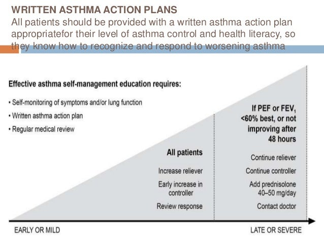 national asthma council of australia guidelines