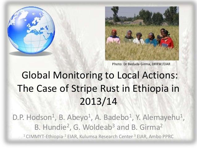 Hodson et al_global_monitoring_local_actions